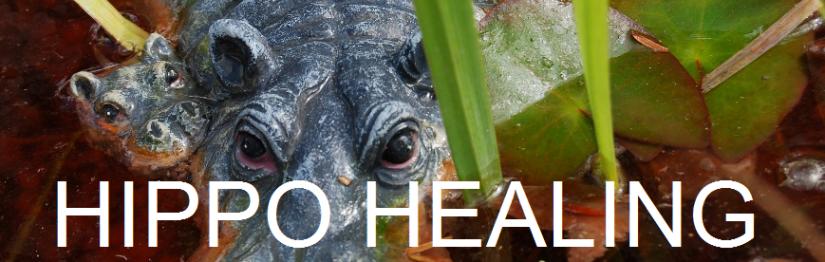 HIPPO HEALING