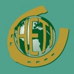HETI-logo-RGB_back